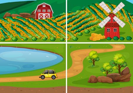 granja: tierras de cultivo en el campo