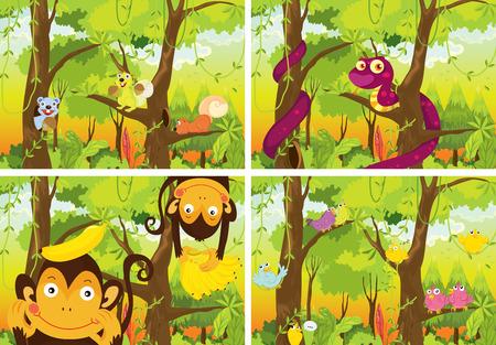 animales de la selva: cuatro escenas de la selva