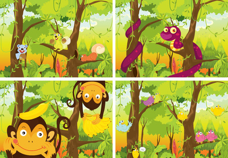 scenery set: four scenes of the jungle Illustration