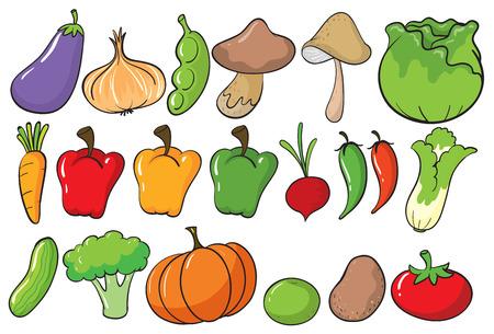 pepino caricatura: Diferentes tipos de verduras Vectores