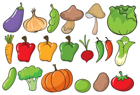 bell tomato: Different type of vegetables