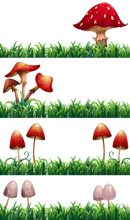 Mushrooms and grass Vector