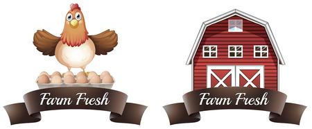 farm fresh: Farm bandiera fresco