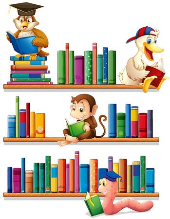 Animals reading books on the shelf