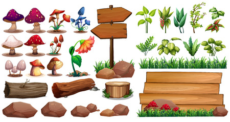 log: Mushrooms and different kinds of plants Illustration