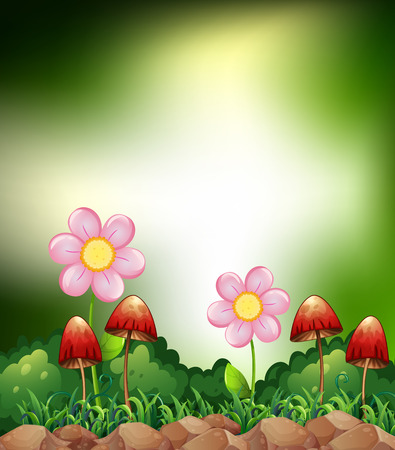 Mushrooms and flowers in the field Vector