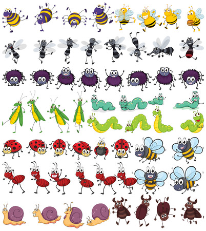 gusano caricatura: Diferentes tipos de pequeños insectos Vectores