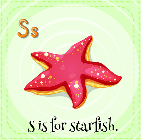 children s: Flash card letter S is for starfish