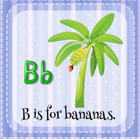 flash card: Flash card letter B is for bananas