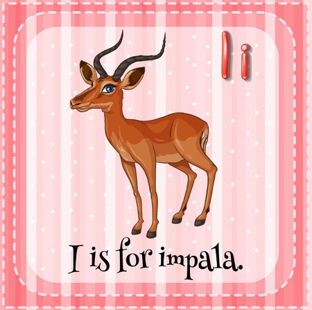 i kids: Flash card letter I is for impala Illustration