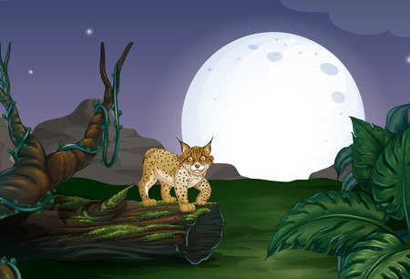 Lynx in the forest with full moon Vector