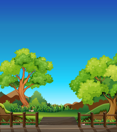 daytime: Forest at daytime with bridge