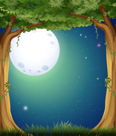 Forest at night with fullmoon background Vector