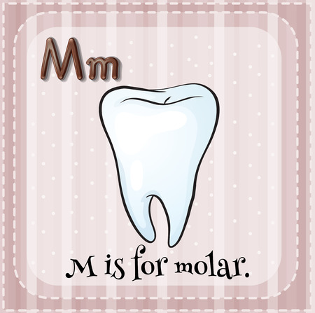 Flashcard letter m is for molar Ilustrace
