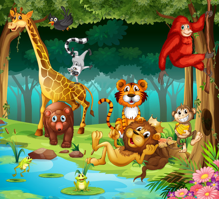 Many animals living in the forest 일러스트