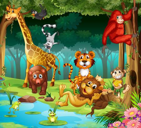 jungle animals: Muchos animales que viven en el bosque