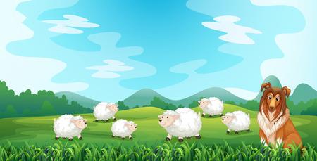 pecora: Pecore e cane nel campo Vettoriali