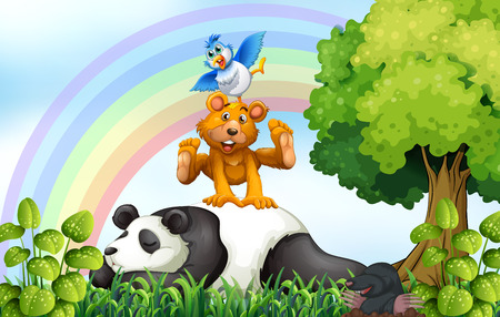 cartoon animals: Animals relaxing in the field with rainbow background