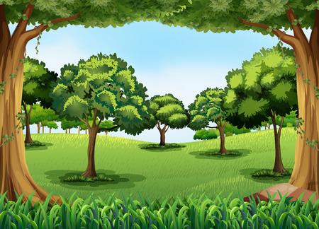 ilustracion: Escena del bosque durante el día