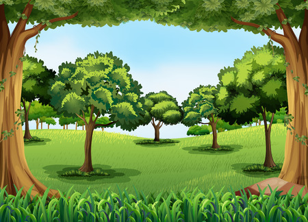 forest clipart: Forest scene at day time