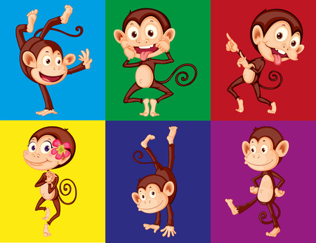 monkey cartoon: Different positions of monkeys in color frame Illustration