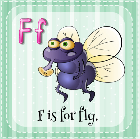 Flashcard letter F is for fly Vector