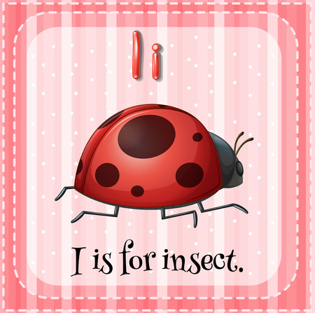 i kids: Flashcard letter I is for insect