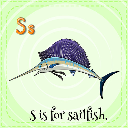 sailfish: Flashcard letter S is for sailfish with green background
