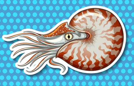 sea creature: Closeup sea creature on blue polka dot background Illustration