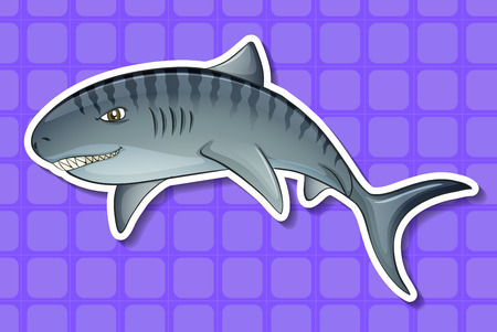 closeup: Closeup angry shark with purple background