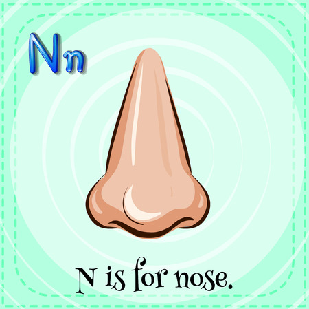 body part: Flashcard letter N is for nose
