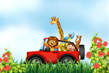 Animals riding a car in the park