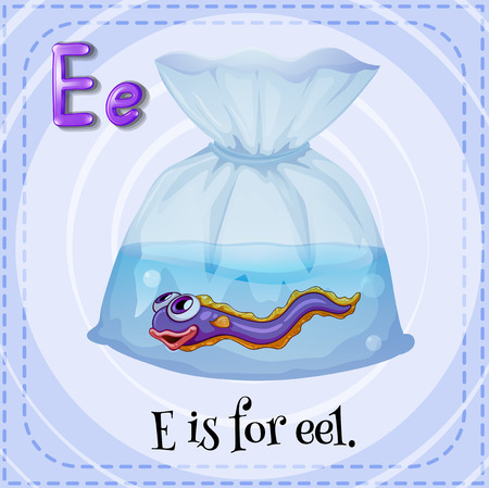Flashcard letter E is for eel Vector