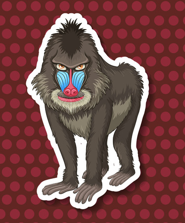 closeup: Closeup baboon with polkadot background