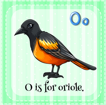 oriole: Flashcard letter O is for oriole