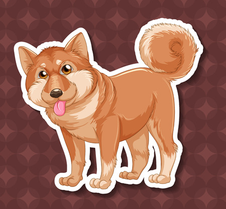 closeup: Closeup shiba dog on circles background Illustration