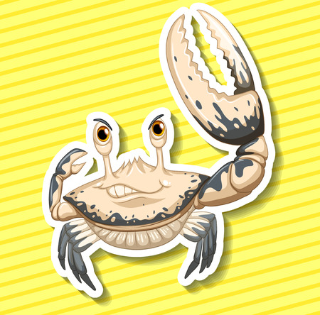 closeup: Closeup white crab with giant claw Illustration