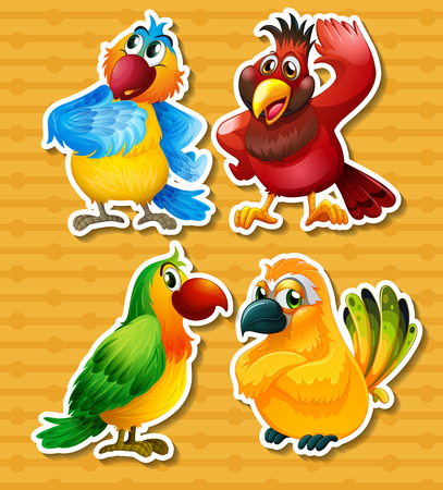 four of a kind: Four different kind of birds on yellow background