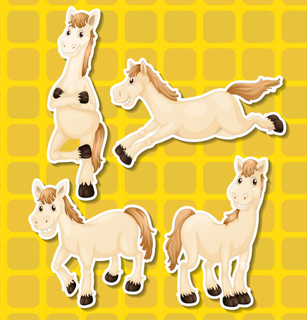 whie: Whie horse in four different positions Illustration