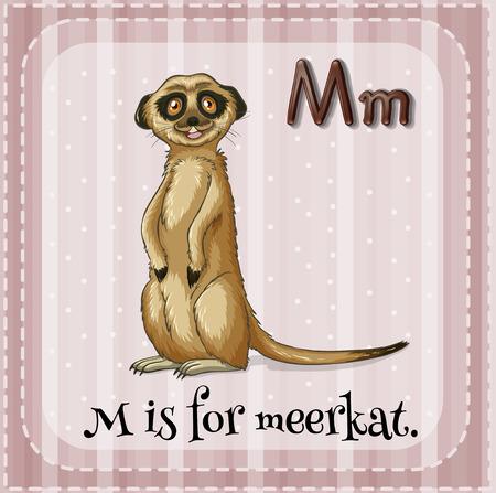 meerkat: Flashcard letter M is for meerkat