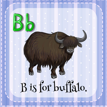 letter alphabet pictures: Flashcard letter B is for buffalo