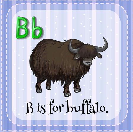 lettres alphabet: Flashcard lettre B est pour Buffalo Illustration