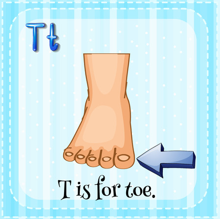 body part: Flashcard letter T is for toe