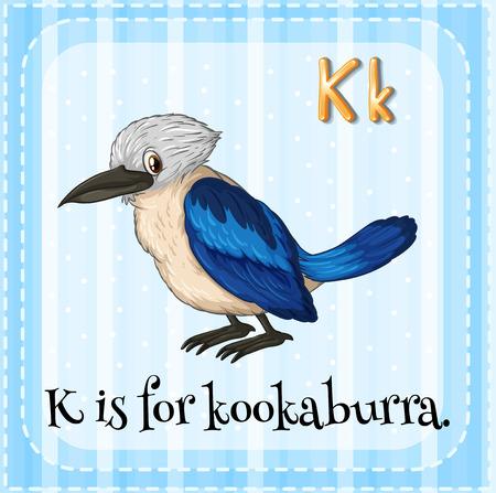 phonetic: Flashcard letter K is for kookaburra