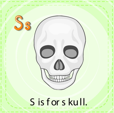 linguistic: Flashcard letter S is for skull