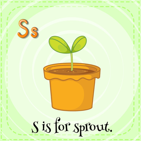linguistic: Flashcard letter S is for sprout