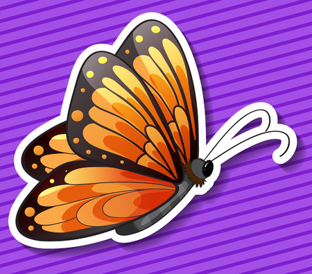 butterfly flying: Colorful butterfly flying with purple background