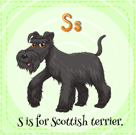 Flashcard of a letter S with a picture of of black scottish terrier