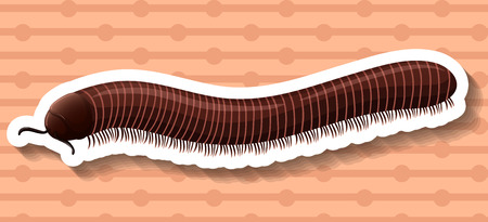 centipede: Sticker of a brown millipede on a brown background