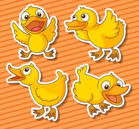 duckling: Cute ducklings in four different positions